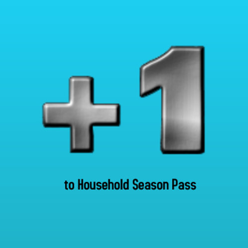 2020 - Add 1 Person to household pass