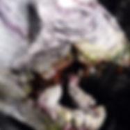 Skull pencil holder/ organizer