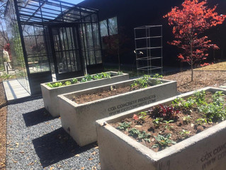 Vegetable Garden Season is Upon us.