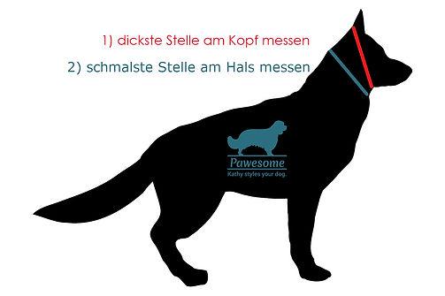 Messanleitung_Logo.jpg