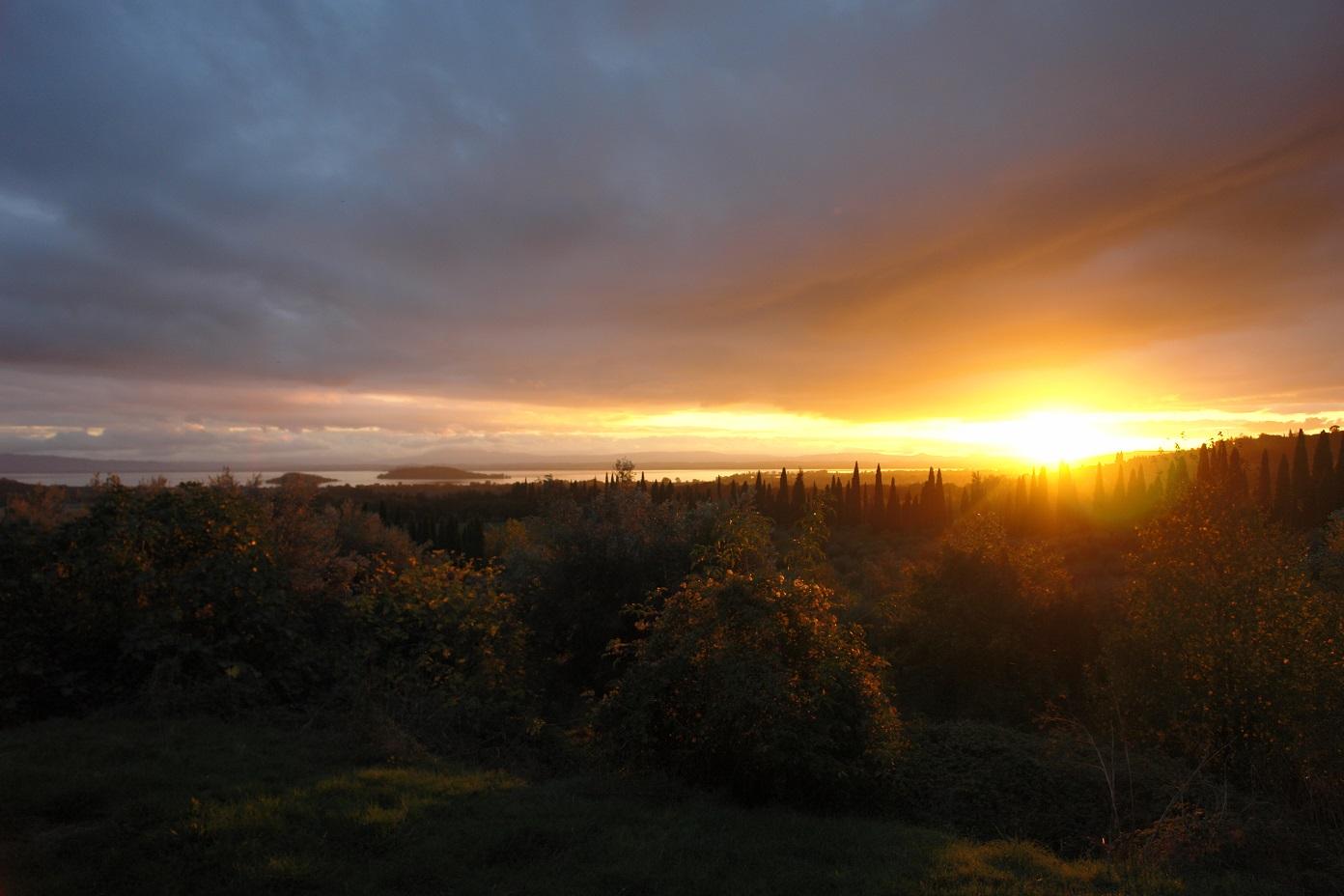 La Torretta 42_Sonnenuntergang Olivenernte