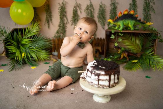 Dinosaur boy cake smash Brighton