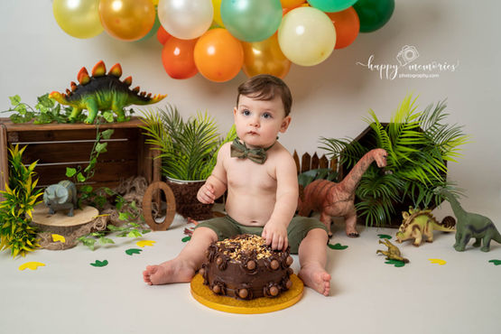 Dinosaur cake smash Horley