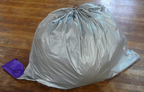 WW silver bag