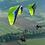 Thumbnail: GIN Falcon PPG