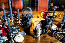 Furry Ventures Black Cat Magic