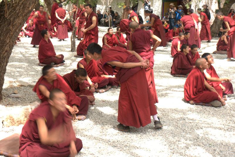 Monks Dabating in Tibet.jpg