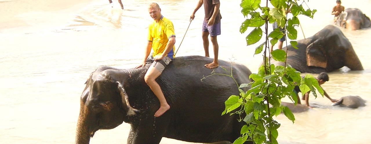 ELEPHANT SHOWER AT CHITWAN 2015-8-22-17:43:39