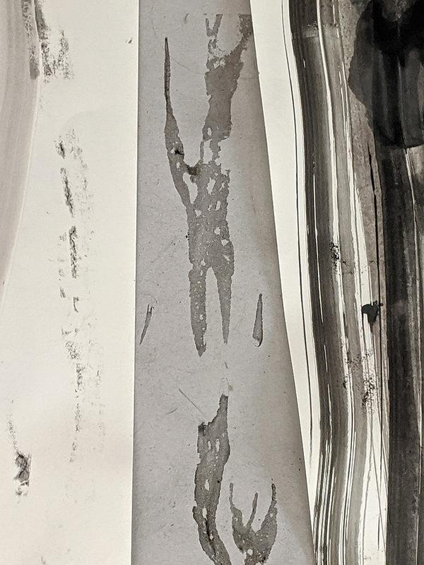 2020 Tusche/Papier 100x70cm