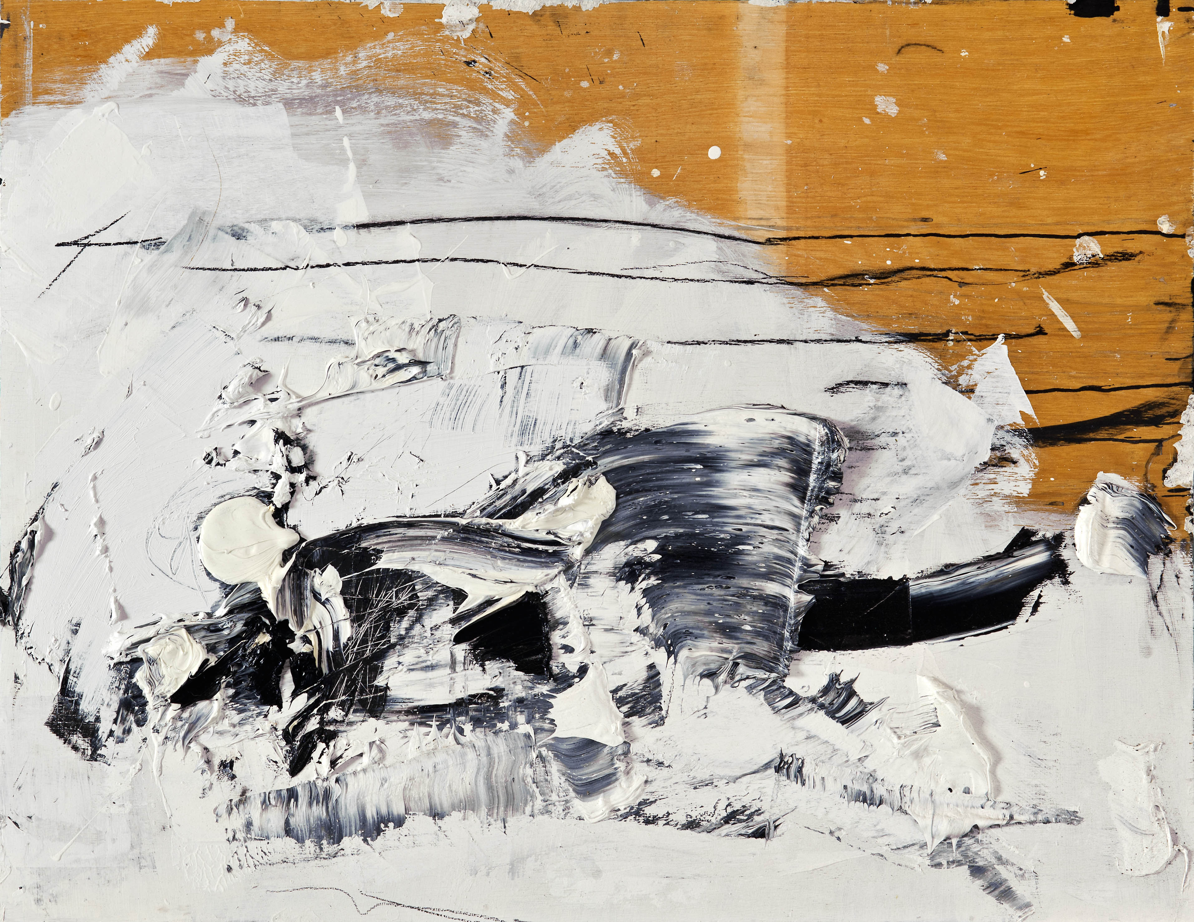 2010 Öl/Holz 80x110cm