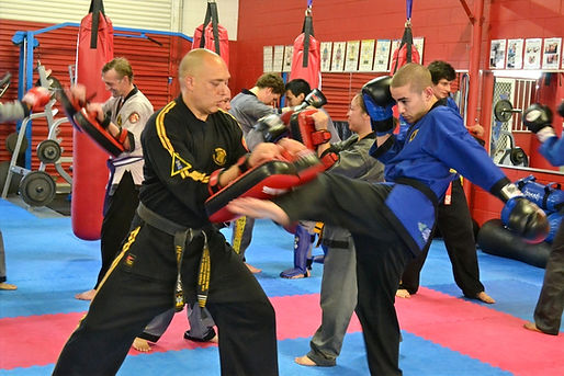 adult_martial_arts_1_20150112_1463293746