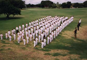 cobra martial arts curtin university.tif