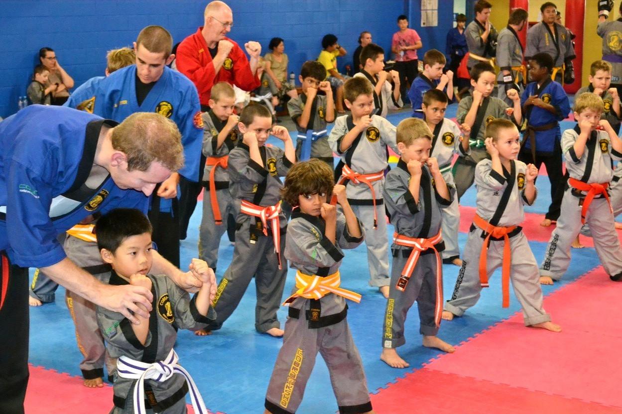 Cobra Martial Arts Children Class