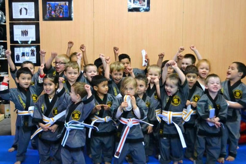 Little Cobra Martial Arts Kids