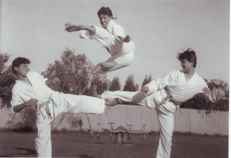 Flying side kick.JPG