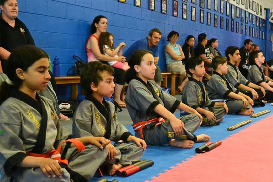 Cobra Martial Arts Discipline