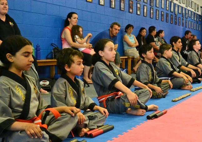 Cobra Martial Arts Discipline