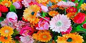 Floral assortment 6 x 3.jpg