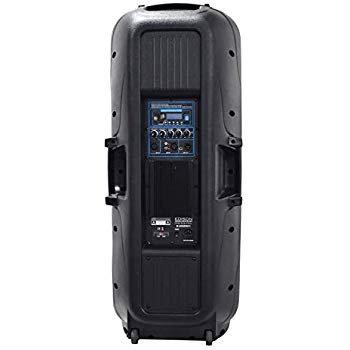 "Edison Professional Twin 15"" PA High Power Speakers ZombietronicsStore.com"