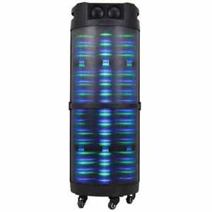 "Edison Professional 800 Watts Peak 10"" Speaker"