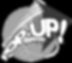 PopUp-Kites_edited.png