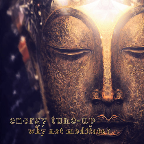 Why Not Meditate?