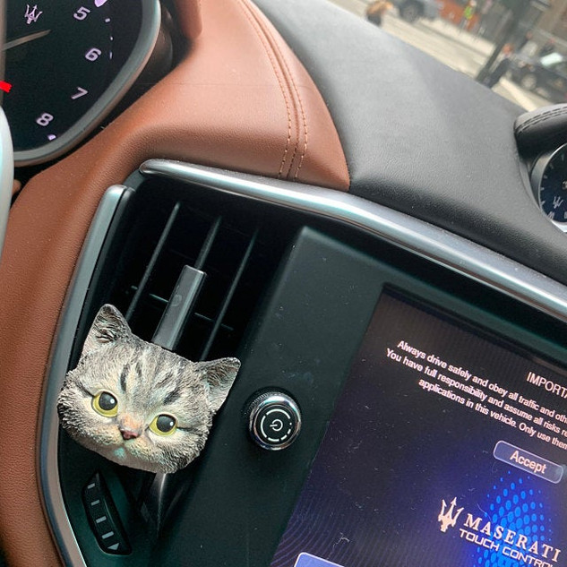 Custom Pet Cat