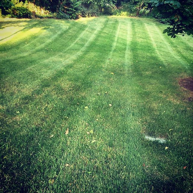 #showusyourstripes #daytonohio #lawncare #lawn #lawnmaintenance #mowing #lawnservice #dunhamslawncar