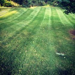 #showusyourstripes #daytonohio #lawncare #lawn #lawnmaintenance #mowing #lawnservice #dunhamslawncar