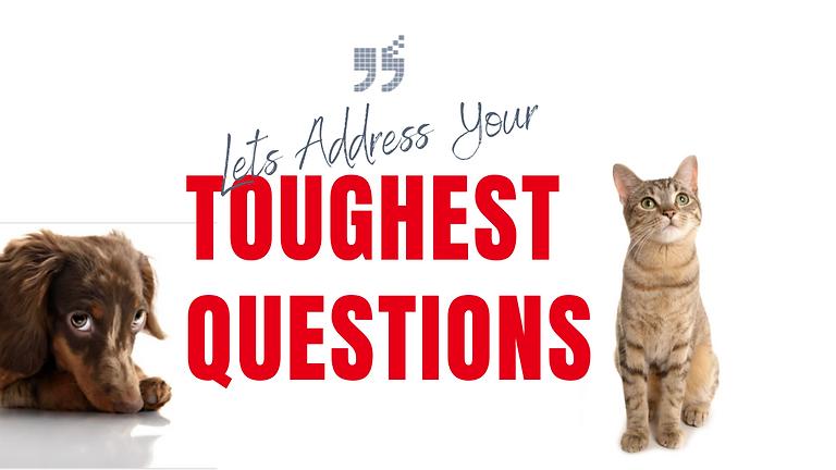 Let's Address Your Toughest Pet Questions