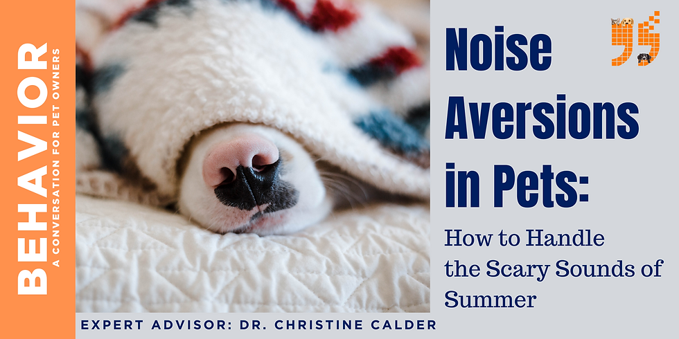 Noise Aversions in Pets: How to Handle the Scary Sounds of Summer