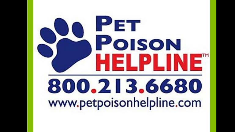 Special Guest: Pet Poison Helpline!
