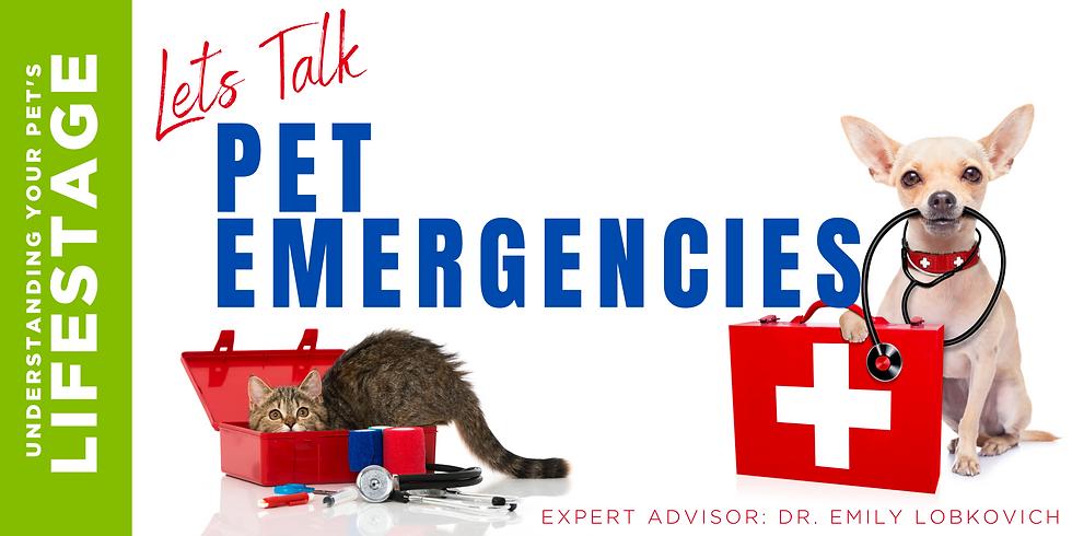 LIFESTAGE: Let's Talk Pet Emergencies