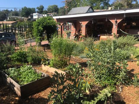 Plant residence: Herb 'N Home