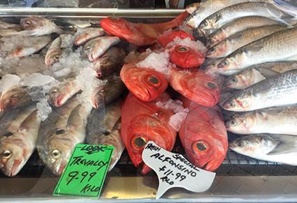 Avondale Fisheries