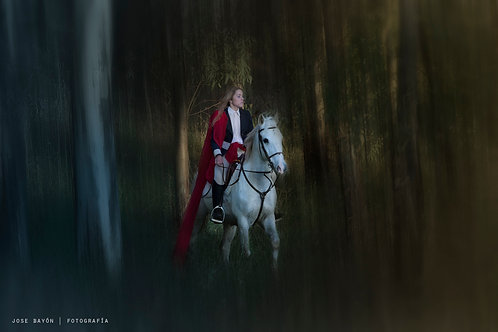 Horses II (serie Bravura fina)