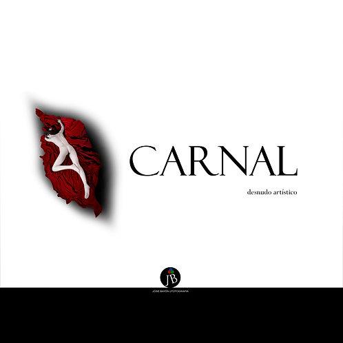 """Carnal"" Fine Art nude (libro-book)"