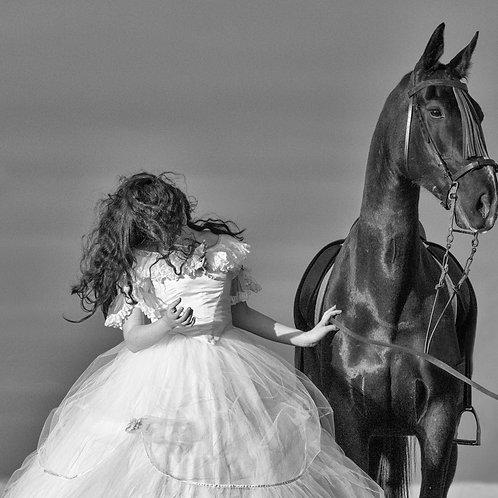 Horses III (serie Antichi)