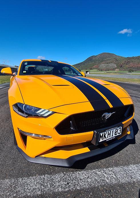 Portrait Mustang.jpg