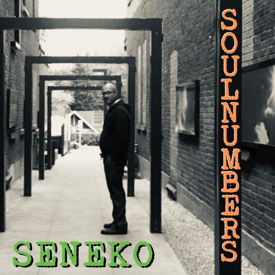 Now Hear This: Soul Numbers (EP) - Seneko