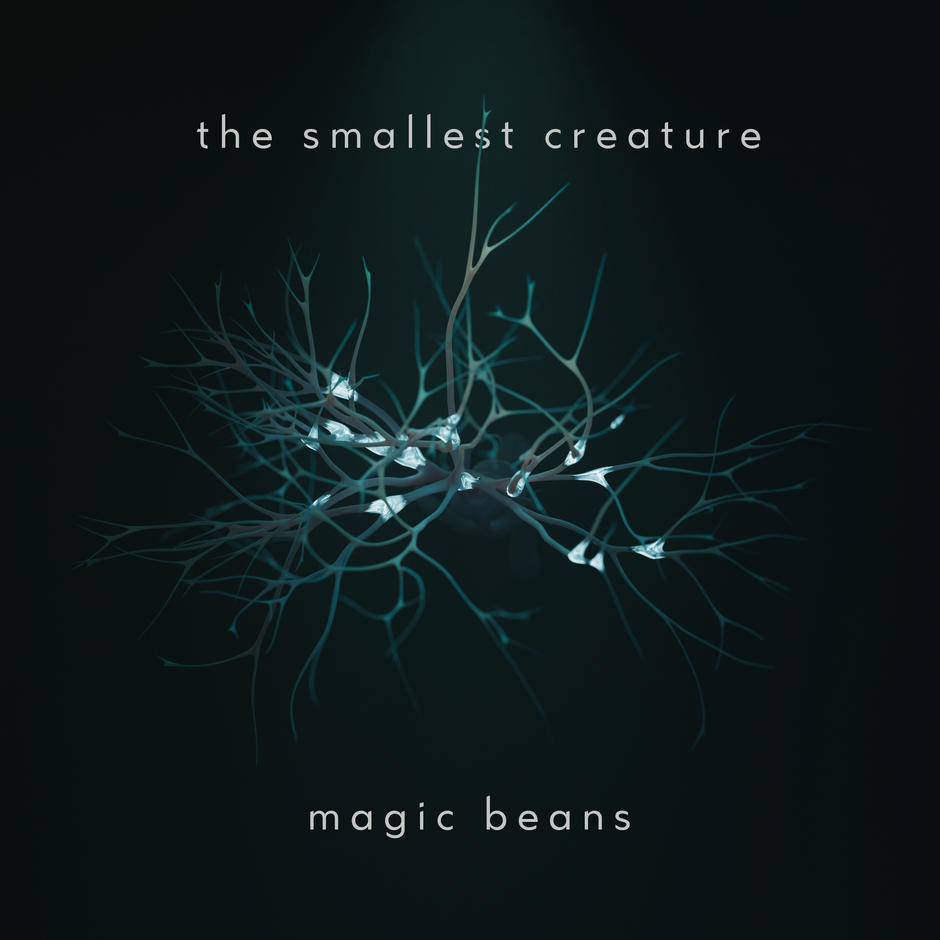 Now Hear This: Magic Beans - the smallest creature