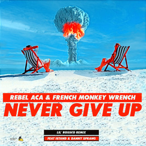 Now Hear This: Never Give Up (single)- Rebel ACA & French Monkey Wrench (feat iSTAND & Danny Sprang)