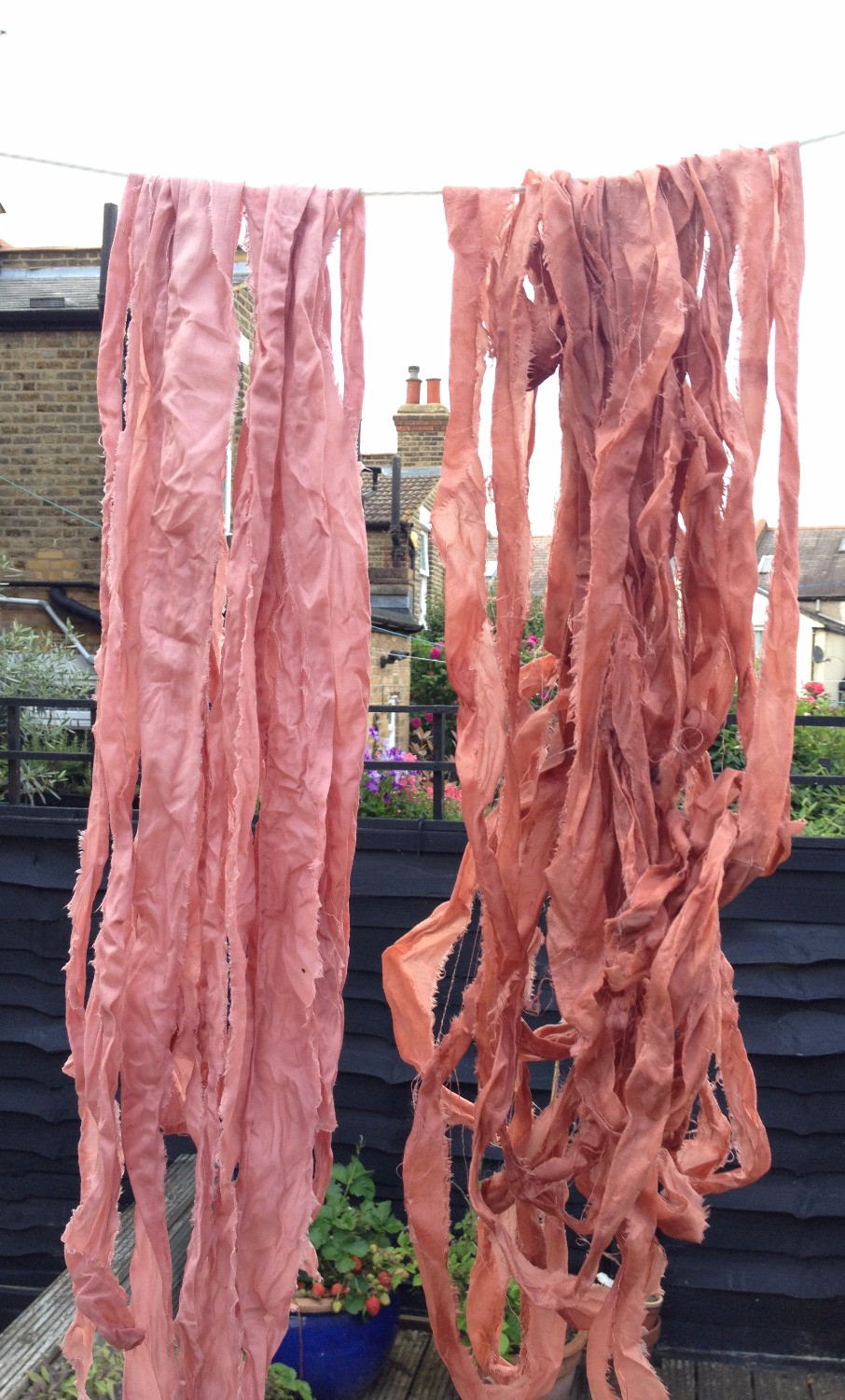 dyed ribbons drying