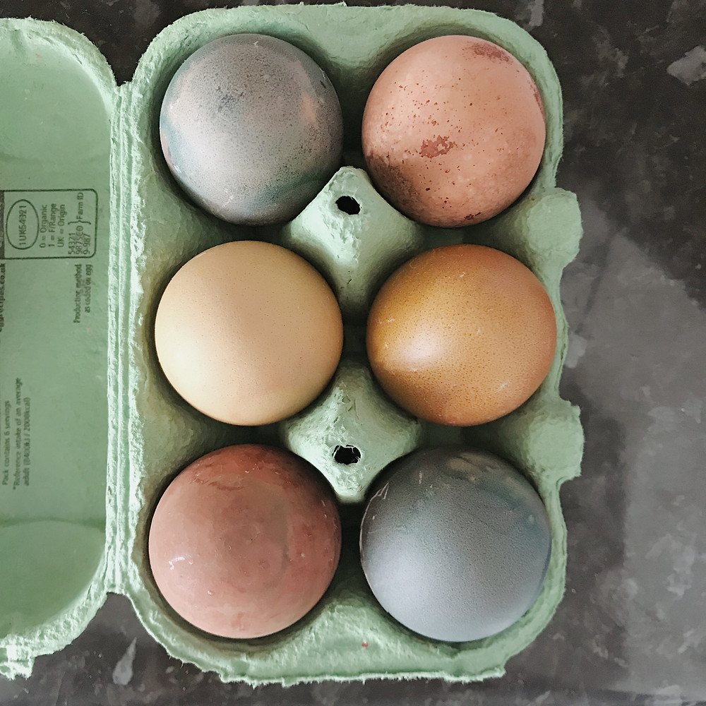 Blue naturally dyed Easter eggs in a box