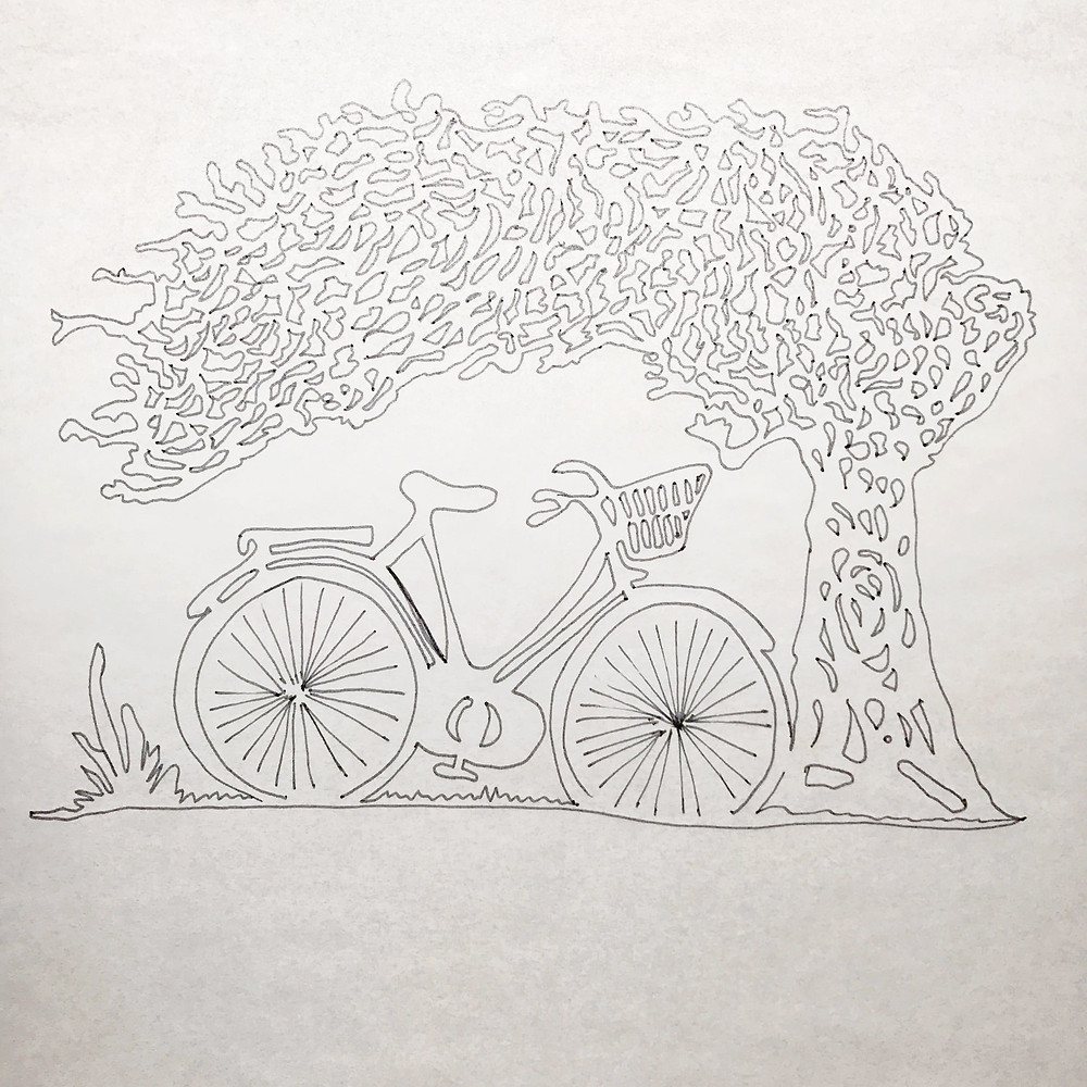 traced drawing of a tree and bicycle
