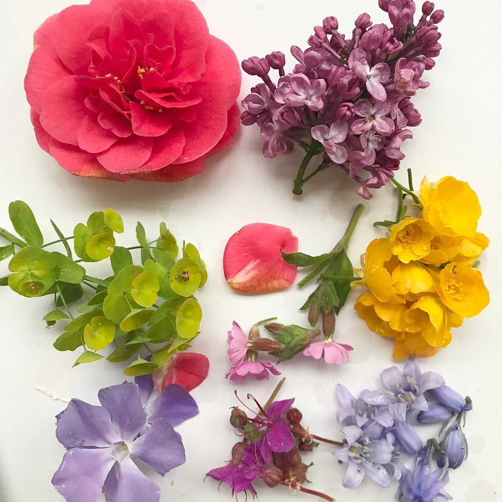 flowers collection for bundle dyeing