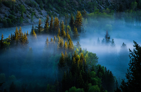 Morning Fog in Grand Teton National Park