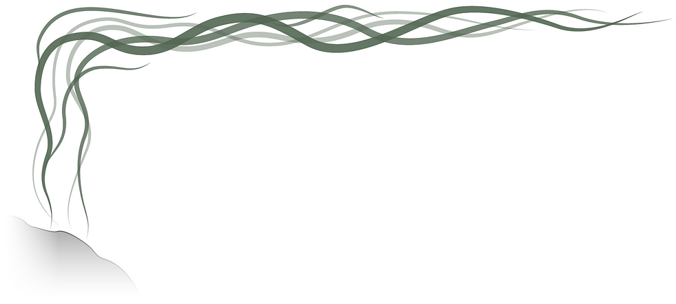 Seaweed forest asset taller.png