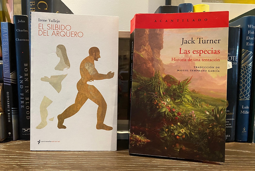 Libros, El silbido del Arquero, Jack Turner, fondo de libros, mesa
