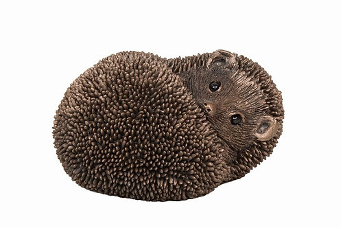 Spike-Hedgehog Resting
